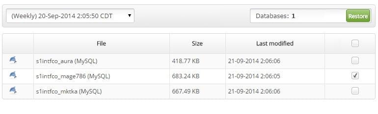 Restoring Database in Backup Restore Manager