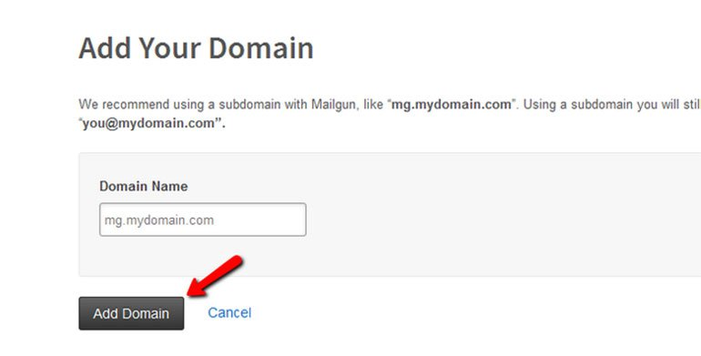 Verify Your Domain in Mailgun Step 2