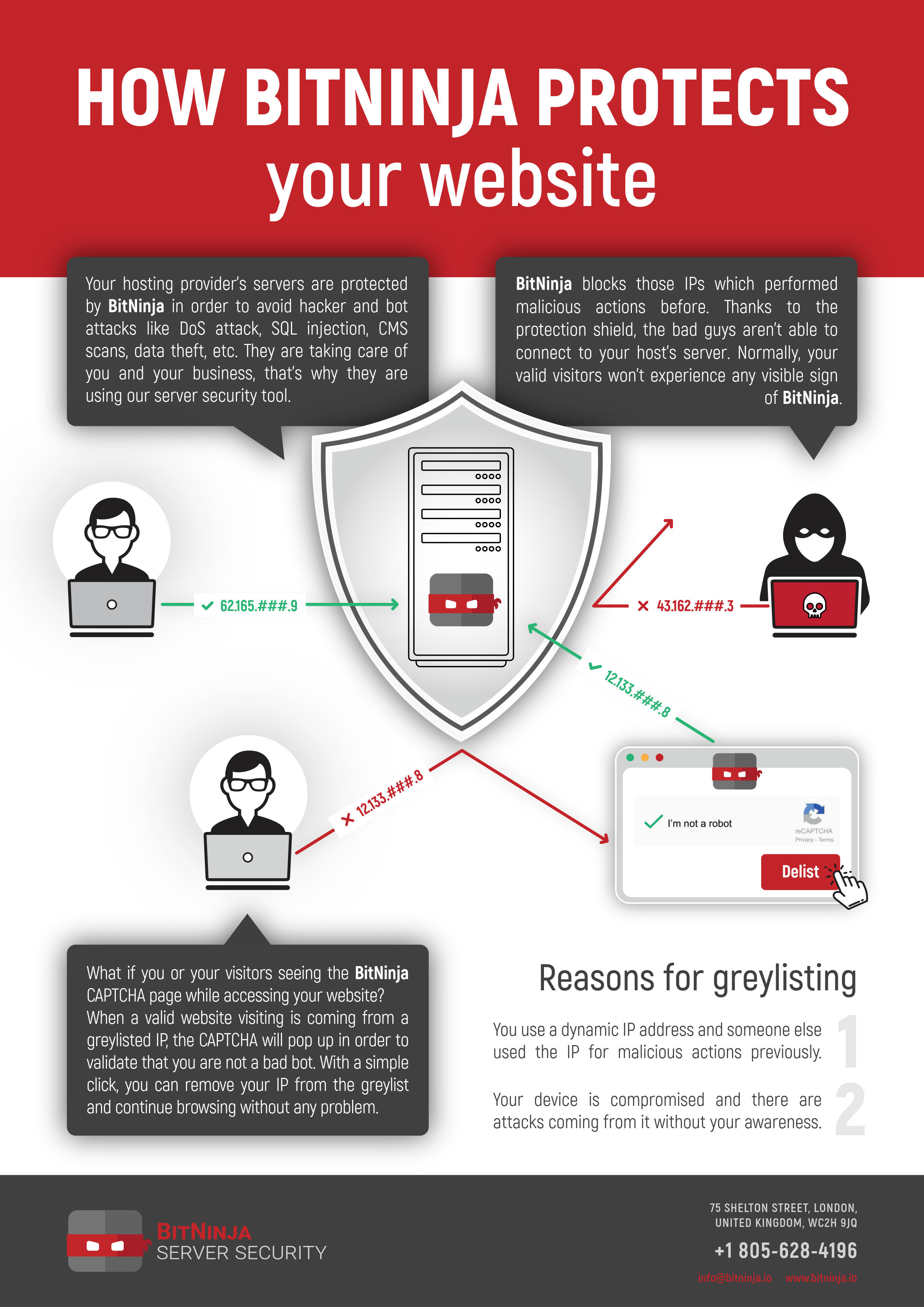 Infographic: How BitNinja protects your website