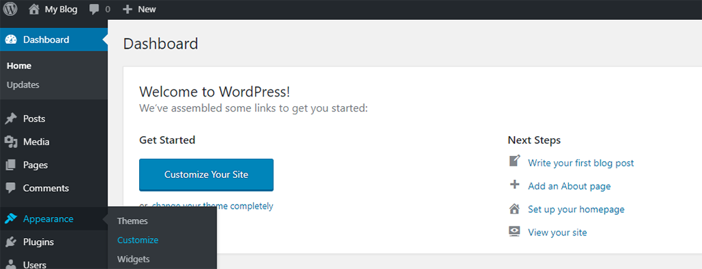 Go to Appearance Customize in WordPress Dashboard