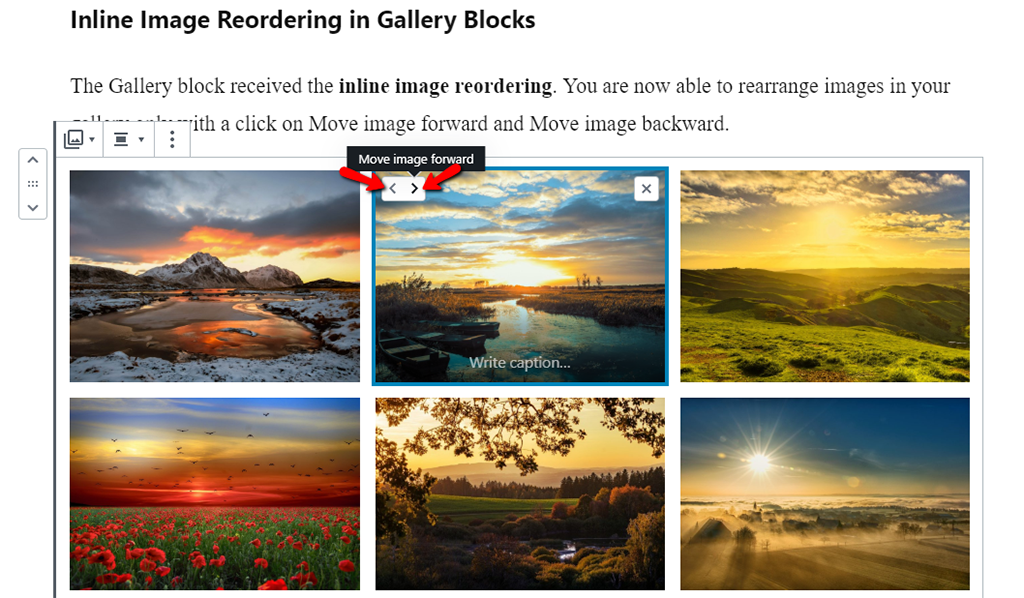 Inline Image Reordering for your Gallery Blocks