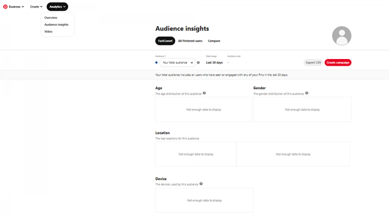 Business Pinterest Account - Audience Insights