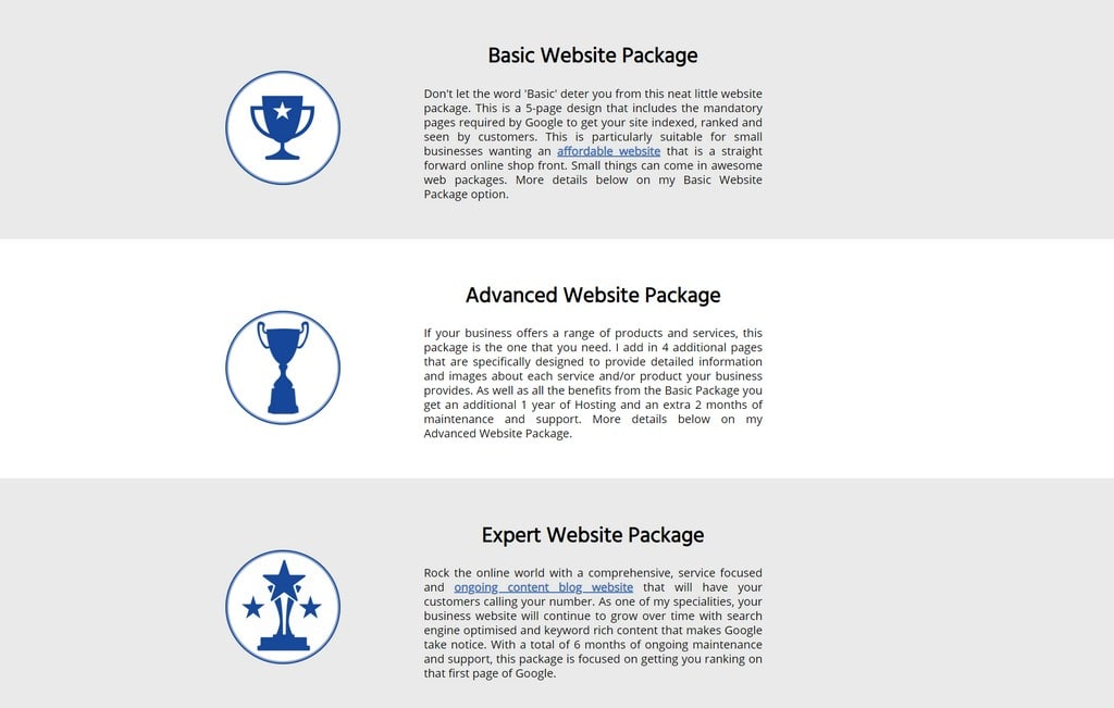 focused webdesigns available service packages